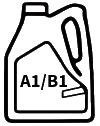 A1/B1